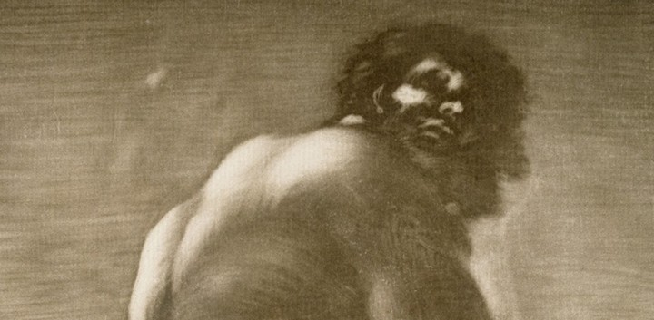 Goya banner