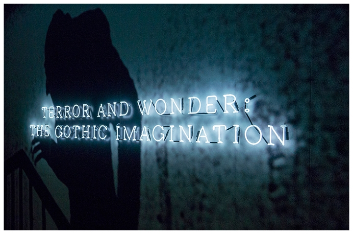 Terror and Wonder 02 (resized for Web)