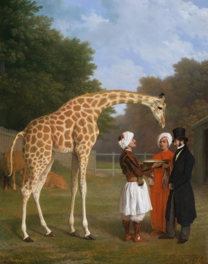 The_Nubian_Giraffe