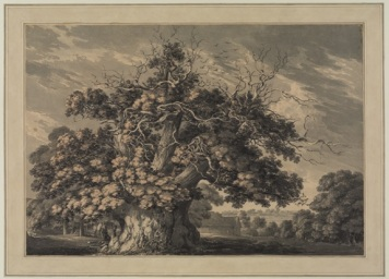 The Chestnut Tree at Little Wymondley, Hertfordshire, 1789